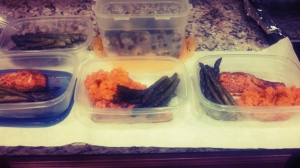 foodprepsalmonveges1